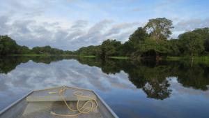 """Amazonien-Synode macht """"Überlebensfrage der ganzen Welt"""" deutlich"""