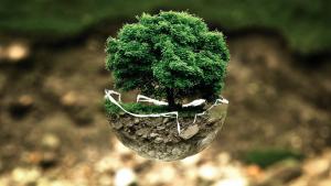 """Die Notwendigkeit, sich """"mit allen Mitteln"""" für eine nachhaltigere Welt einzusetzen"""