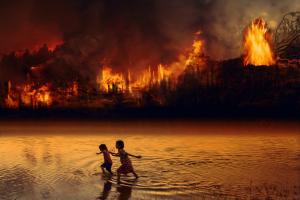 """Papst gegen """"neue Formen des Kolonialismus"""" im Amazonasgebiet"""