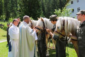 16. Pferdewallfahrt in Maria Kirchental