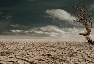 Divestment: Kirche zieht Geld aus umweltschädlichen Firmen ab