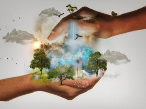 Österreichs Bischöfe unterstützen Klimavolksbegehren