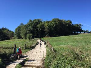 Experte: Pilger-Boom in Österreich hält an